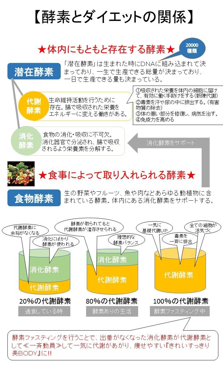 酵素とダイエット1